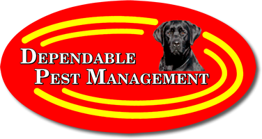 Dependable Pest Management